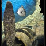 Underwater_Wreck_1_web