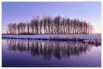 Leitha-Winter-web2
