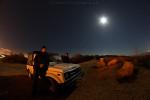Unser Gipsy im Mondschein