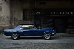 Mustang-BlackCrow-2-web