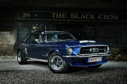 Mustang-BlackCrow-3-web