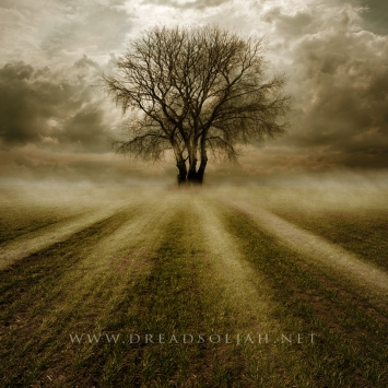 the_4_trees_of_destiny_web