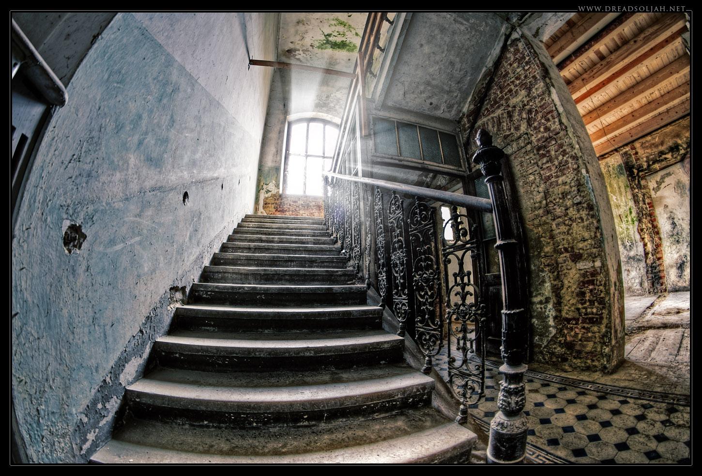 Erbse-Stiegenhaus-web2