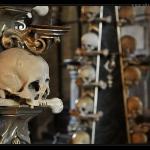 Skull Kutna Hora